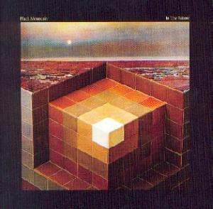 Black Mountain: In the future, Coverabbildung